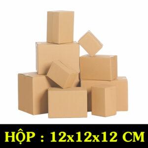 Hộp Carton COD B05 – 12x12x12 Cm